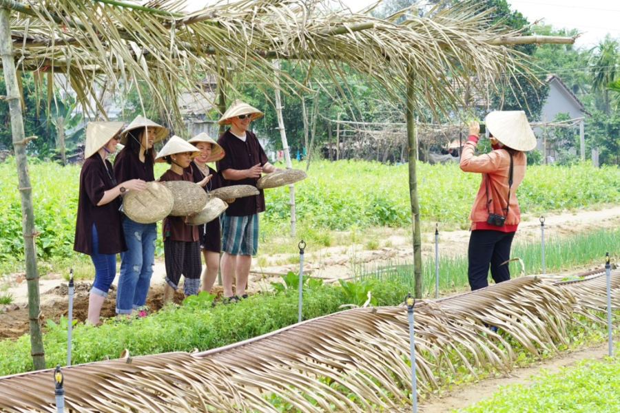 hoi an biking and cooking class tour