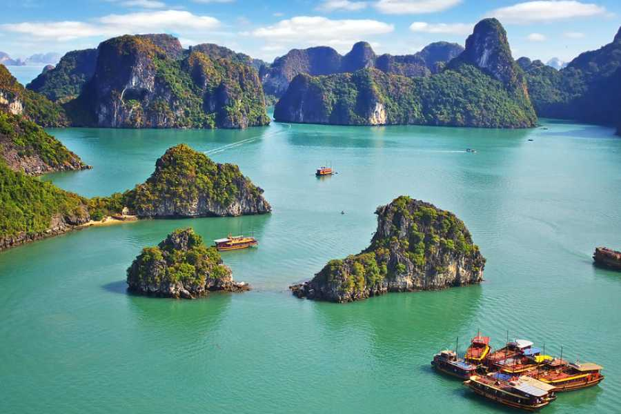 halong bay cruise 2 days 1 night